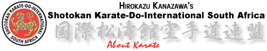 About Karate